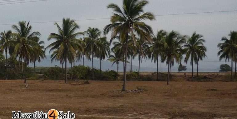 M4S-005-Playa-El Caimanero-Land For Sale-Mazatlan-6