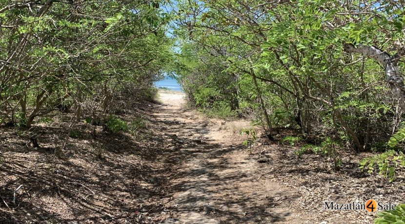 Oceanfront Land For Sale Mexico (2)