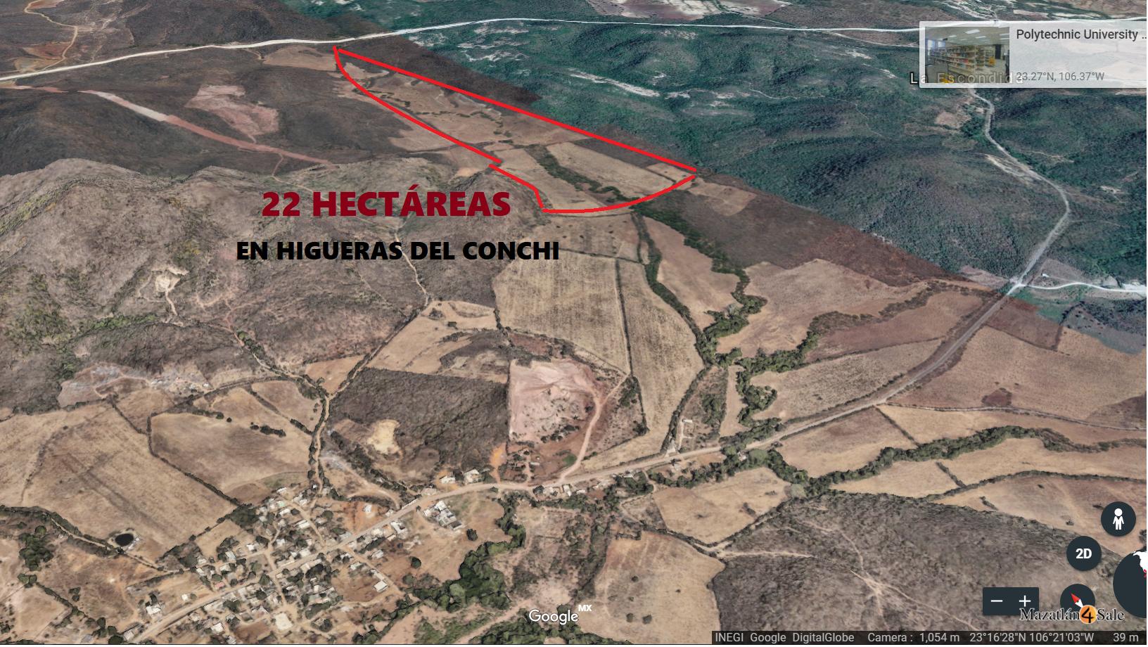 Land For Sale  / HIGUERAS DEL CONCHI